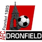AFC Dronfield Reserves