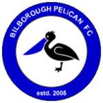 Bilborough Pelican