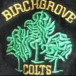 Birchgrove Colts