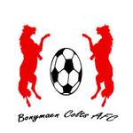 Bonymaen Colts