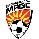 Broadmeadow Magic