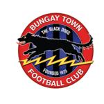 Bungay Town Reserves