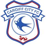 Cardiff City Development