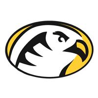 Cedar Crest Falcons