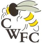 Chalfont Wasps