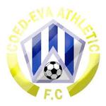 Coed Eva Athletic