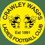 Crawley Wasps Development