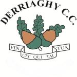 Derriaghy CC