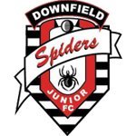 Dundee Downfield