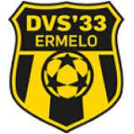 DVS 33