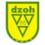DZOH (Drentse Zuid Oost Hoek)