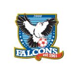 Falcons 2000