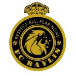 FC Baylis United