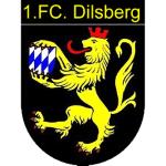 FC Dilsberg