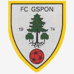 FC Gspon