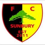 FC Sunbury