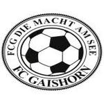 FC Systemholz Gaishorn