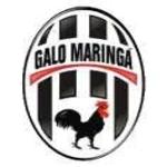 Galo Maringa