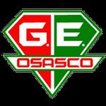 Gremio Esportivo Osasco Feminino