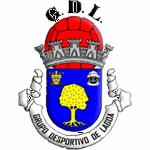 Grupo Desportivo de Lagoa