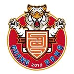 Guangdong South Tigers