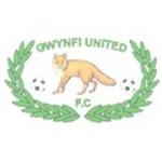 Gwynfi United