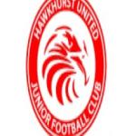 Hawkhurst United