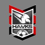 Holland Park Hawks
