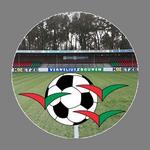 HSV De Zuidvogels (Huizen Sport Vereniging)