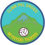 Mynydd Tigers