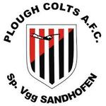 Plough Colts