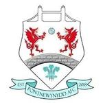Pontnewynydd Reserves