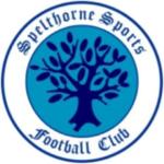 Spelthorne Sports