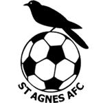 St Agnes III