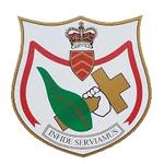 St Albans AFC