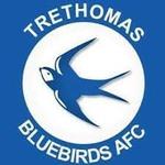 Trethomas Bluebirds