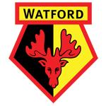 Watford Development
