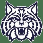 Wilmington Wildcats