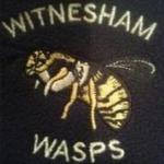 Witnesham Wasps