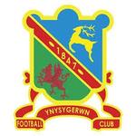 Ynysygerwn Reserves
