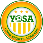 Yong Sports Academy