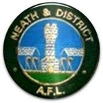 Neath and District League Division 1