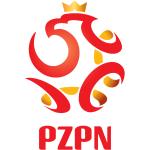 Other Polish Teams