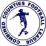 Combined Counties League Division 1