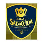 Liga Nacional de Futbol Profesional de Honduras