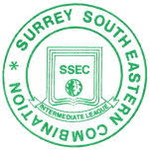 Surrey South Eastern Combination Intermediate League Junior Division 2
