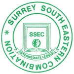 Surrey South Eastern Combination Intermediate League Junior Division 6