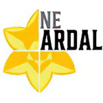 Ardal League North East