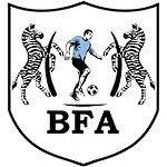 Other Botswanan Teams