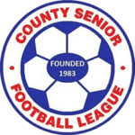 Sheffield County Senior League Division 1